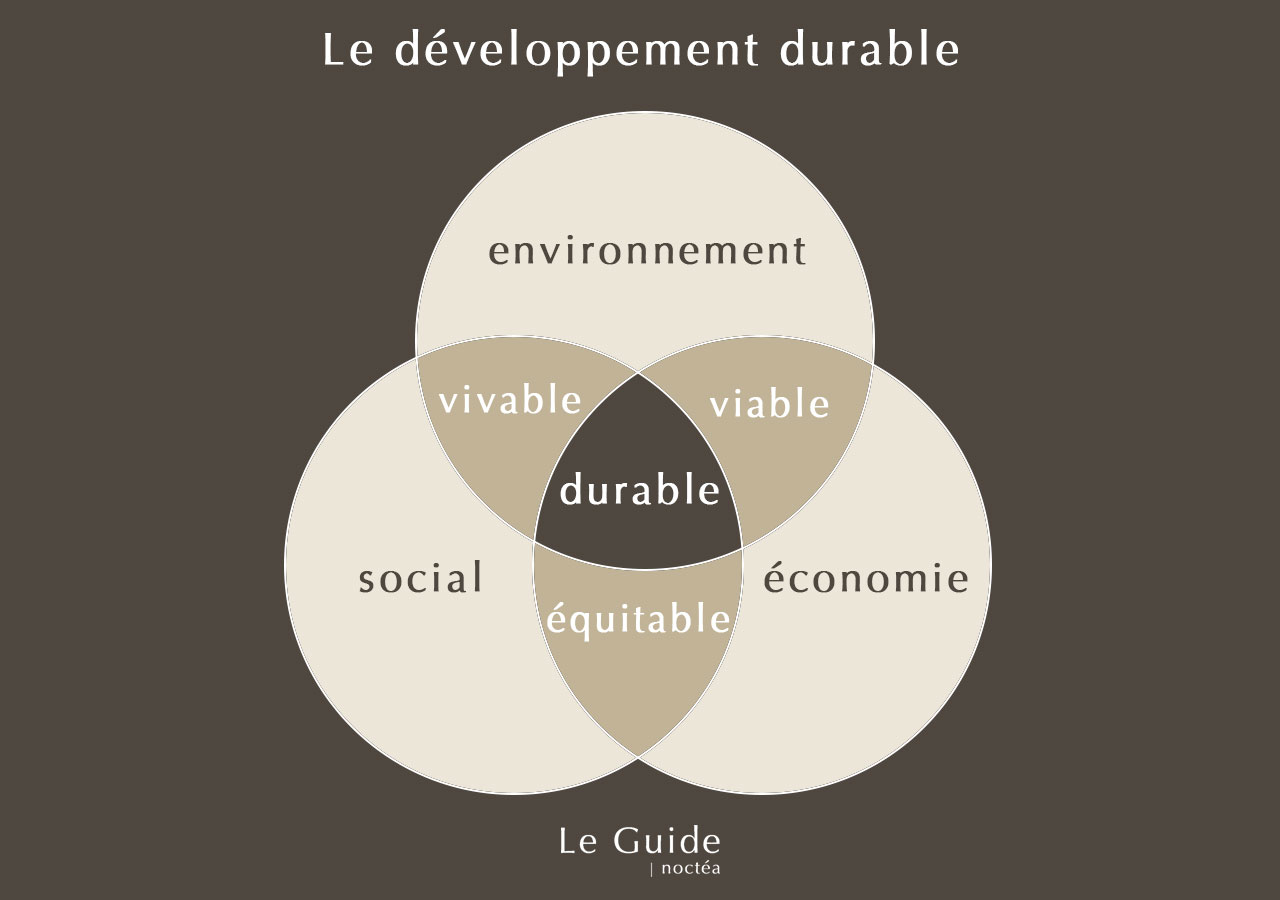 Développement durable défintion simple